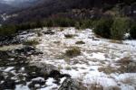 Северният склон на Могилата почти не е засегнат, заради снега, който не се е бил