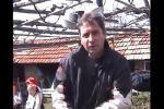 Кметът Красимир Трайков дава интервю