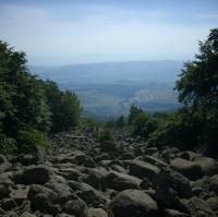 Каменната река на Танчовица