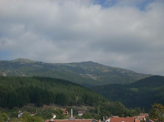 връх Селимица