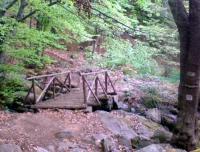 Дървено мостче на алеята под манастира (река Йордан)