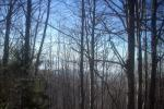 снимка на Мъгла над Пернишката кутловина
