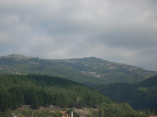 Селимица