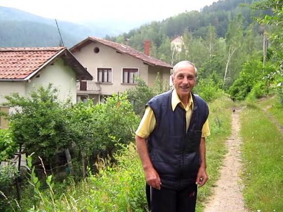 Бичи пред къщата си в Кладница