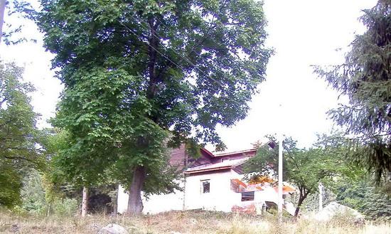 Хижа Селимица